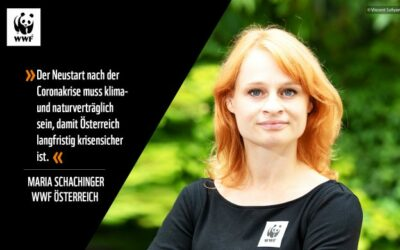 EU-Wiederaufbauplan für Österreich: WWF fordert Natur- und Klimaschutz-Offensive