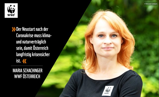 Maria Schachinger, WWF Österreich